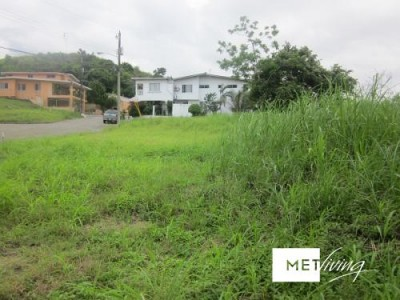 103265 - lote