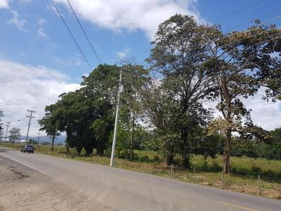 108055 - lote