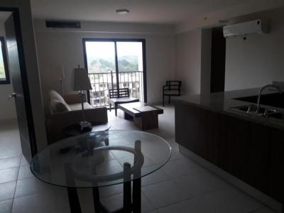 112902 - Albrook - apartamentos - embassy village