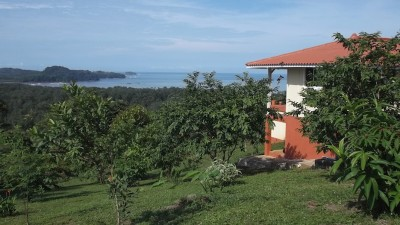 38301 - venta finca - Finca with house and spectacular view at panama